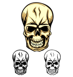 skull color dwa vector image vector image