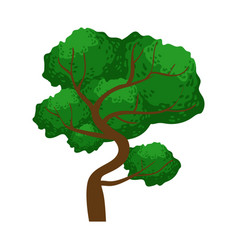 spreading green tree element of a landscape vector image