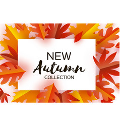 autumn paper cut leaves new autumn collection vector image