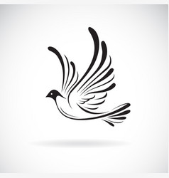 birdsdove design on a white background wild vector image