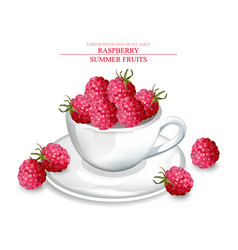 raspberry in a white cup realistic summer vector image