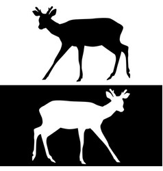 sika deer with horns black and white silhouettes vector image