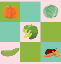 vegetables pumpkin cabbage broccoli zucchini vector image vector image