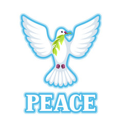 white dove of peace bears olive branch vector image vector image