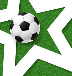 Soccer football poster Grass background with white vector image vector image