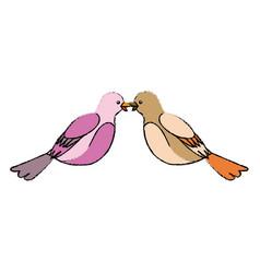 cute bird exotic beak feather adorable icon vector image