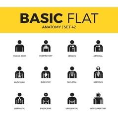 Basic set anatomy icons vector