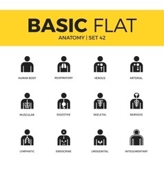 Basic set of anatomy icons vector image