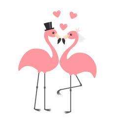 Two pink flamingo set wedding couple bride vector