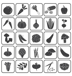 Basic vegetables icons collection vector