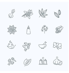 Web icon set - spices condiments and herbs vector image