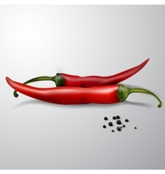 two red hot chili peppers isolated vector image vector image