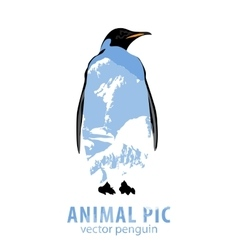 Penguin and mountains vector image