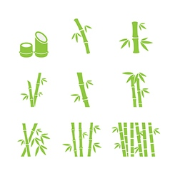Bamboo icon vector