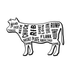 Beef cuts template butcher guide isolated on vector