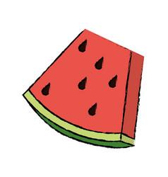 drawing watermelon sweet vitamin nature vector image
