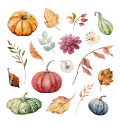 Thanksgiving set colorful pumpkins vector