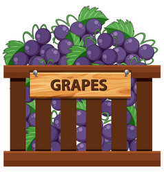 Wooden crate of grape vector