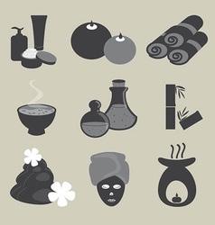 Basic Spa Icons Set vector image vector image