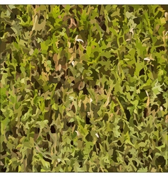 Hedgerow texture vector image
