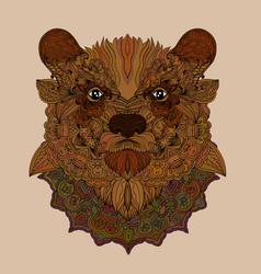 doodle bear portrait vector image vector image