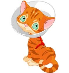 Sick Cute Kitten vector image vector image