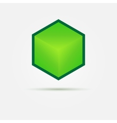 Isometric Green 3d cube Logo vector