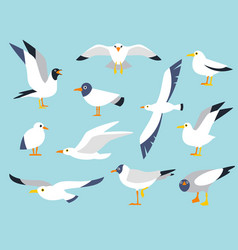 set beautiful seagulls in a flat style vector image