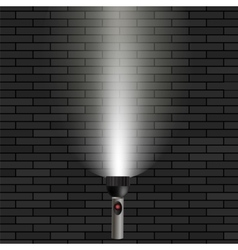 White Beam of Light vector image