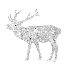 coloring book page for adults patterned deer vector image