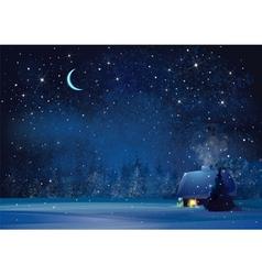 winter night house vector image