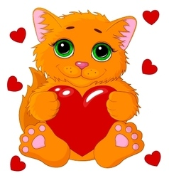 Cute cat with a heart vector image