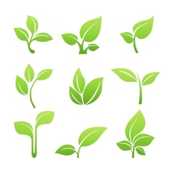 Green sprout symbol icon set vector image vector image