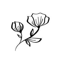 Hand drawn modern flowers drawing and sketch vector