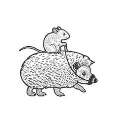 Mouse riding hedgehog sketch vector