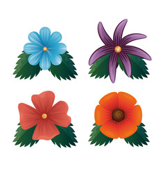 set of beautiful colorful flowers vector image