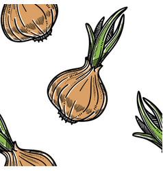 Vegetable seamless pattern onion farm harvest vector
