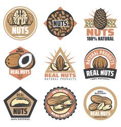 vintage colored organic food emblems set vector image