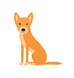australian dog dingo sitting vector image