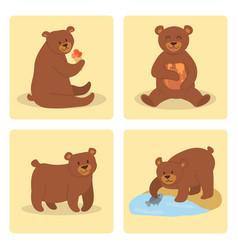 cartoon bear character teddy pose set wild vector image