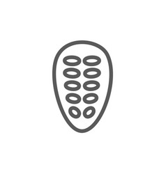 cocoa beans line icon vector image