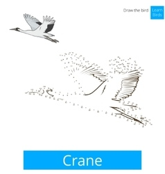 Crane bird learn to draw vector image