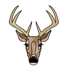Deer antlers animal wildlife image vector