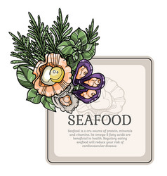 seafood square frame vector image