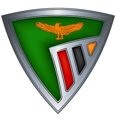 steel shield with flag zambia vector image