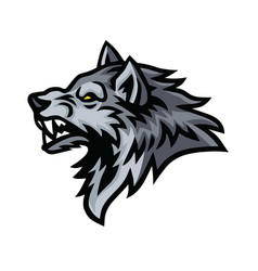 wolf beast logo sports mascot design vector image