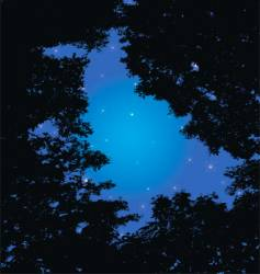 forest and night sky vector image