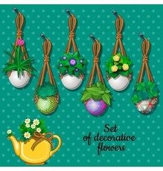 Set flowers in hanging pots and kettle 7 elements vector image