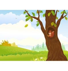 Autumn squirrel vector image vector image