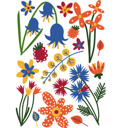 Beautiful colorful wild or garden blooming flowers vector